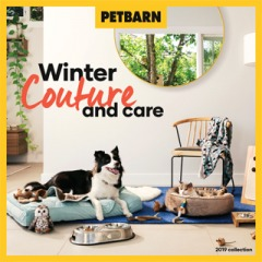 Winter Couture and Care