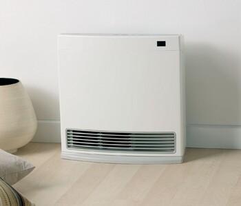 Rinnai Dynamo 15 Natural Gas Convector Heater - White