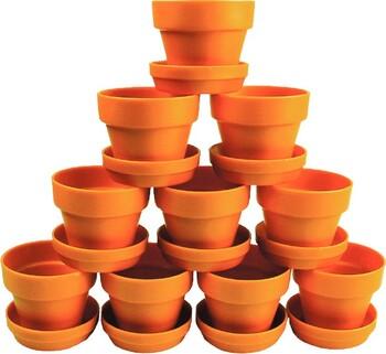Colorific Plant Pots