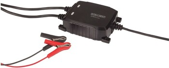 NEW 8-Step Automatic Marine Battery Charger with Dual Output