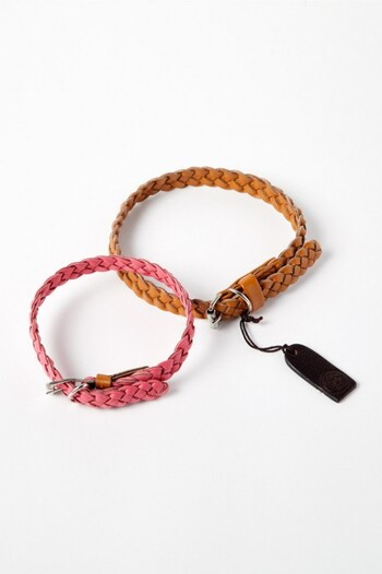 Georgie Paws Windsor Dog Collar