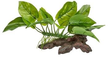 Aqua One Plant Garden On Wood Ornament (XS)