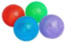 Leaps-Bounds-Bouncing-Spiny-Ball-Dog-Toy-Assorted Sale