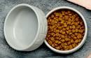 Bond-Co-Ceramic-Meow-Cat-Bowl Sale