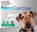 Nexgard-Tick-and-Worm-Prevention Sale