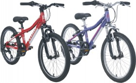 Fluid-Rapid-Kids-20-Mountain-Bike on sale