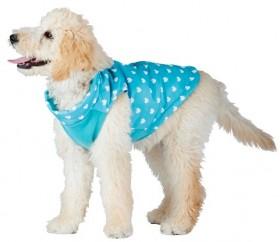 Bond-Co-Mini-Hearts-Dog-Jacket-Turquoise on sale