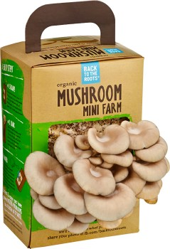 Organic-Mushroom-Mini-Farm-1kg on sale