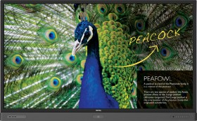 BenQ-Interactive-Flat-Panel-Display-75 on sale