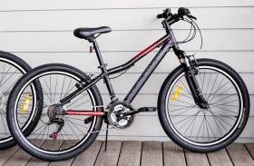Goldcross-Junior-Motion-60cm-Bike on sale