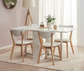 Hayman-5-Piece-Extendable-Dining-Set-with-Toto-Chairs on sale