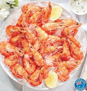 Australian-Extra-Large-Cooked-Black-Tiger-Prawns-Thawed on sale