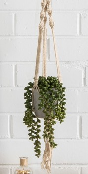 Ombre-Home-Tropical-Soul-Hanging-Plant on sale