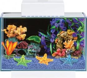 Coral-Set-Up on sale