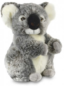 Korimco-Koala-Kalypso-Premium-Plush on sale