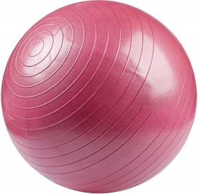 55cm-Burst-Resistant-Gym-Ball on sale