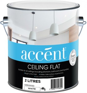 accent-Ceiling-2L on sale