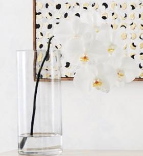 House-Home-Cylinder-Glass-Vase-30cm on sale