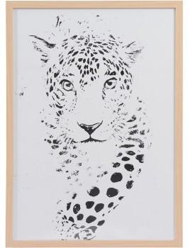 Design-House-Leopard-Framed-Print on sale