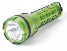 NEW-Companion-D-LED-Torch on sale