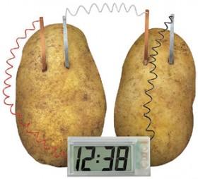 Potato-Clock on sale