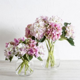 Hydrangea-Stems-by-M.U.S.E on sale