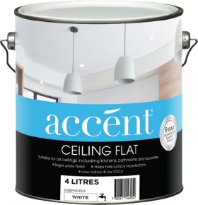 accent-Ceiling-4L on sale