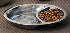 Harmony-Stainless-Steel-Dual-Cat-Plate on sale