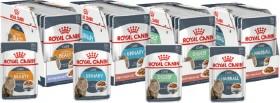Royal-Canin-Premium-Wet-Cat-Food-Pouches-12x85g-Range on sale