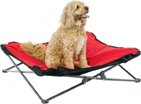 Slumbertrek-Collapsible-Pet-Bed on sale
