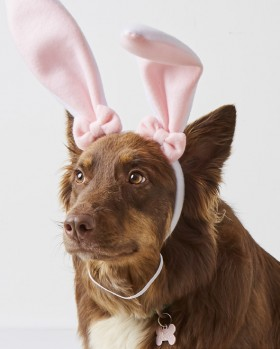 30-off-Happy-Easter-Pet-Bunny-Headband on sale