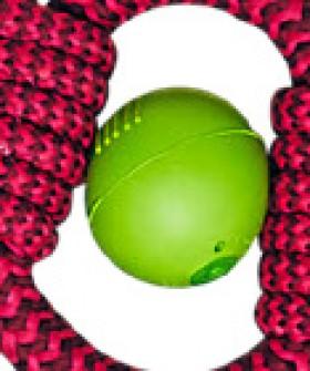 JW-Isqueak-Ball-Dog-Toy on sale