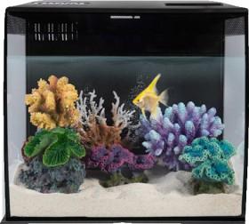 Fluval-Flex-Aquarium-Black-34-Litre on sale