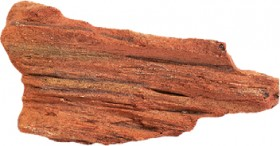 Aqua-One-Petrified-Wood on sale