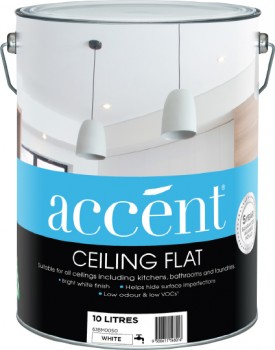 accent-Ceiling-10L on sale
