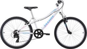 Fluid-Rapid-Youth-24-Bike on sale