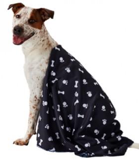 Pet-Blanket-70cm-x-100cm on sale
