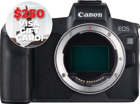 Canon-EOS-R-Body on sale
