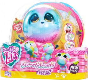 NEW-Little-Live-Pets-Assorted-Scruff-a-Luff-Scented on sale