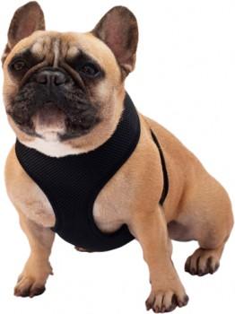 Brilliant-Basics-Large-Comfort-Dog-Harness on sale