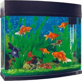 Marine-Masters-20-Litre-Marine-Master-Fish-Tank on sale