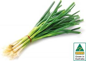 Eschallots-Spring-Onions on sale