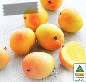 Australian-Mangoes on sale